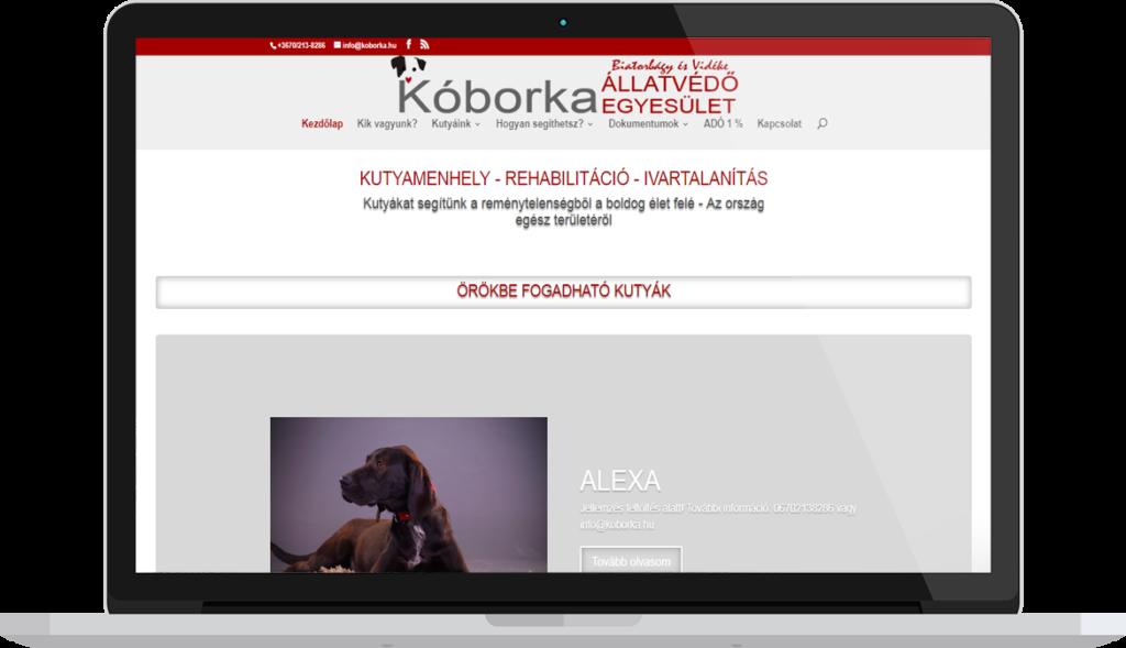 Alapítványi honlapkészítés minta, weblap készítés referencia